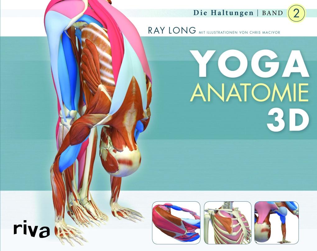 Anatomie | YOGASTERN