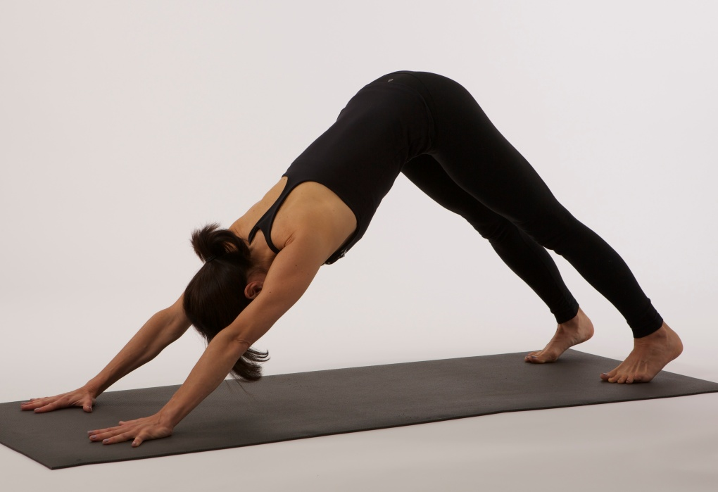 Yogaübung Adho Mukha Svanasana