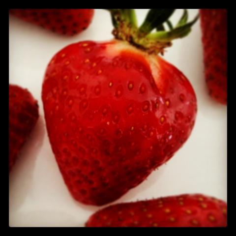 Frische Erdbeeren als Snack