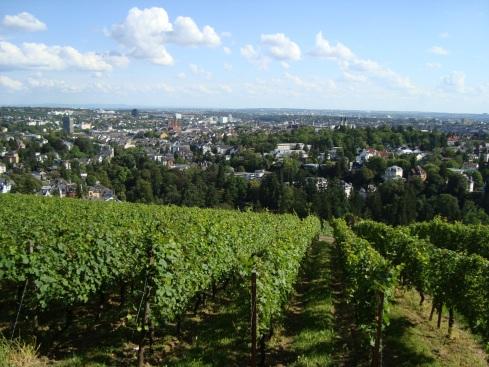 Blick vom Wiesbadener Neroberg
