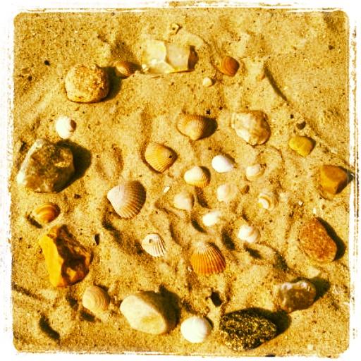 Mandala aus Muscheln und Steinen