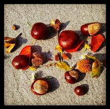 Dinge für Herbstliches Mandala