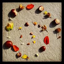 Herbstliches Mandala mit Dingen aus der Natur
