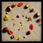 Herbstliches Mandala
