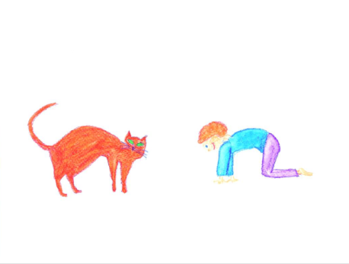 Katze_Ute_Alter
