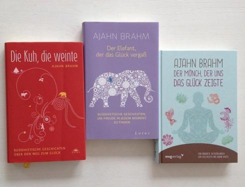 3 Brahm Bücher